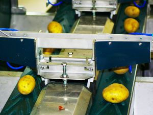 Sorting Machines Detail
